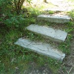stockvault-stone-steps-stairs131065